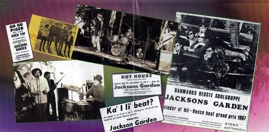 Jacksons Garden1