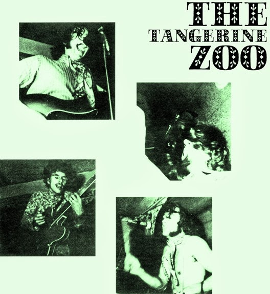 The Tangerine Zoo1