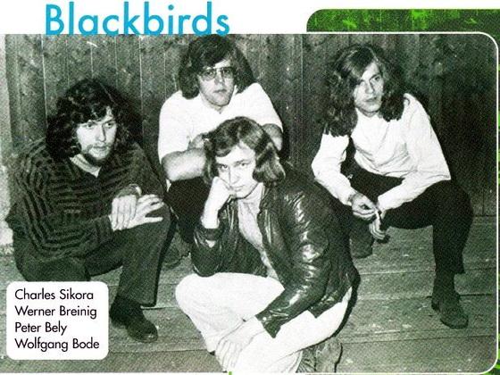 Blackbirds4