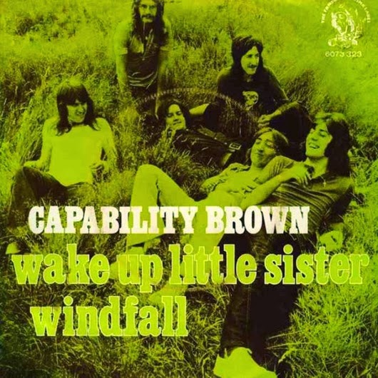 Capability Brown3