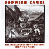 Sopwith Camel22