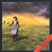 Stackridge4