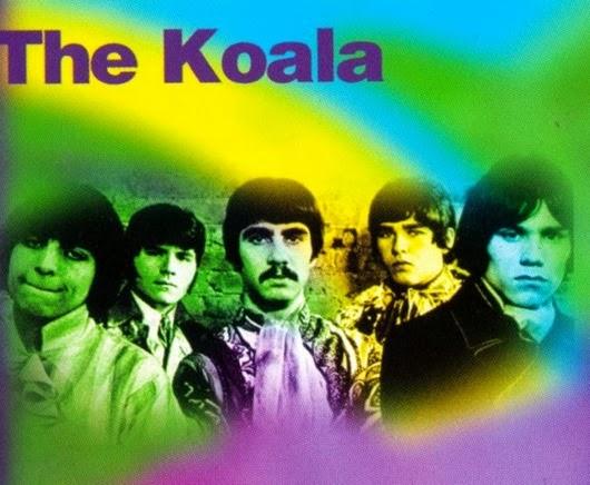 The Koala1