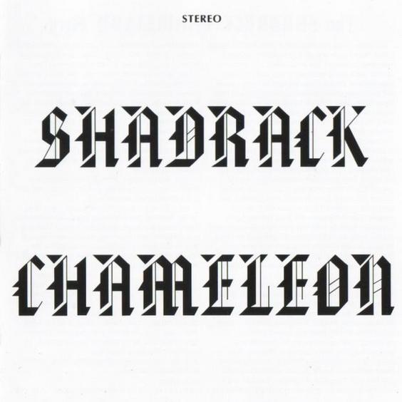 Shadrack Chameleon