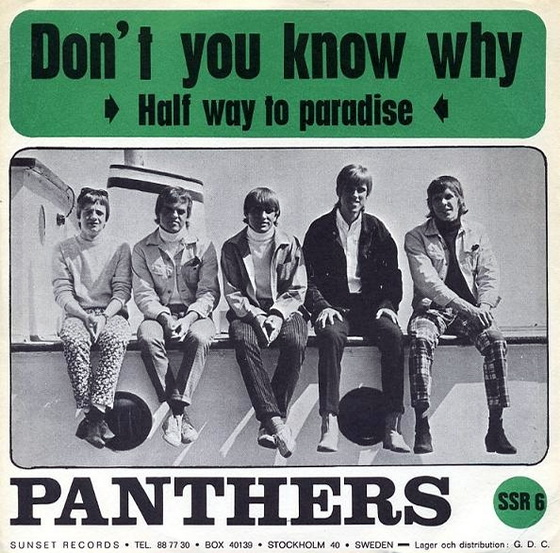 The Panthers1