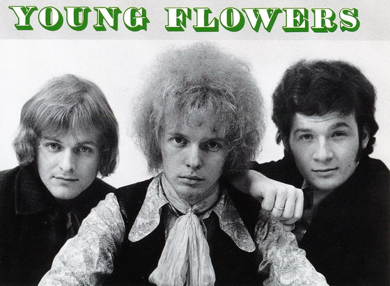 Young Flowers1