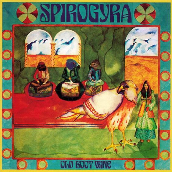 Spirogyra3