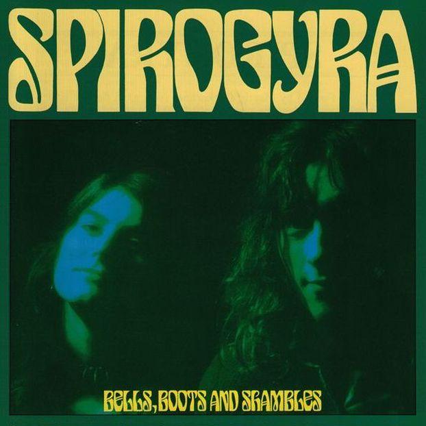 Spirogyra5