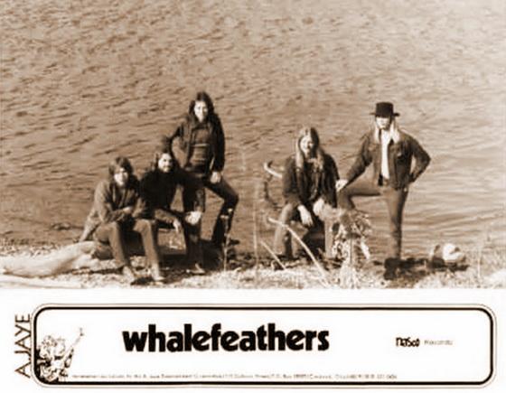 Whalefeathers1