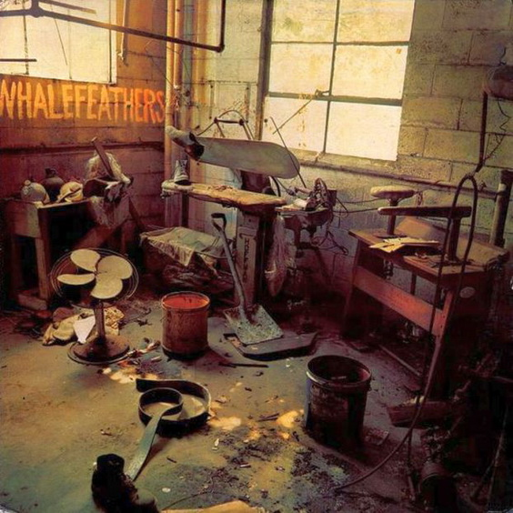 Whalefeathers2