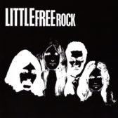 little_free_rock91