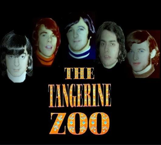 The Tangerine Zoo3