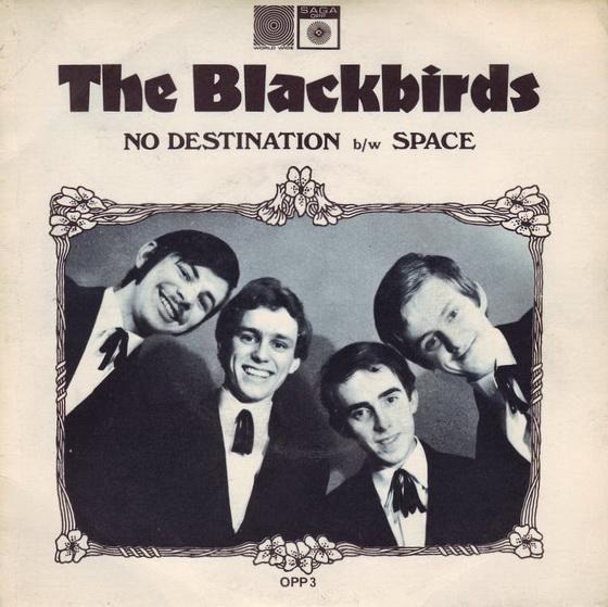 Blackbirds0
