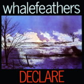 Whalefeathers