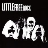 little_free_rock91