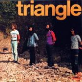 triangle8